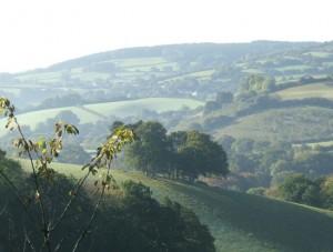 hill sheldon Dscf1815